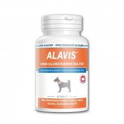 ALAVIS MSM + Glukosamin sulfát 60 tabliet
